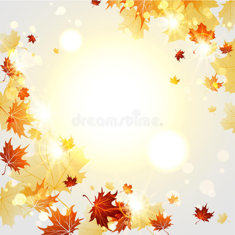 Free Bright Autumn Background With Maple Leaves Stock Image - 62208351