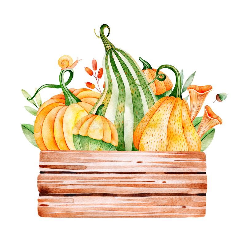 Bright autumn illustration with fall leaves,branches,berries,mushrooms. Pumpkins,wooden basket,snail and more.Perfect for greeting card,menu,blogs,graphic vector illustration
