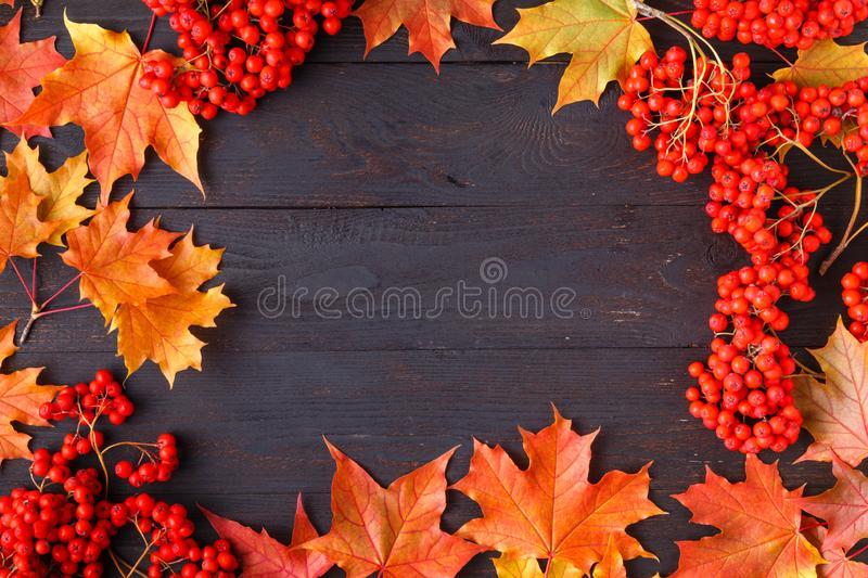 Bright autumn leaves and text; generic fall background, perfect for sale banners, wedding invitation or save the date template, se royalty free stock images