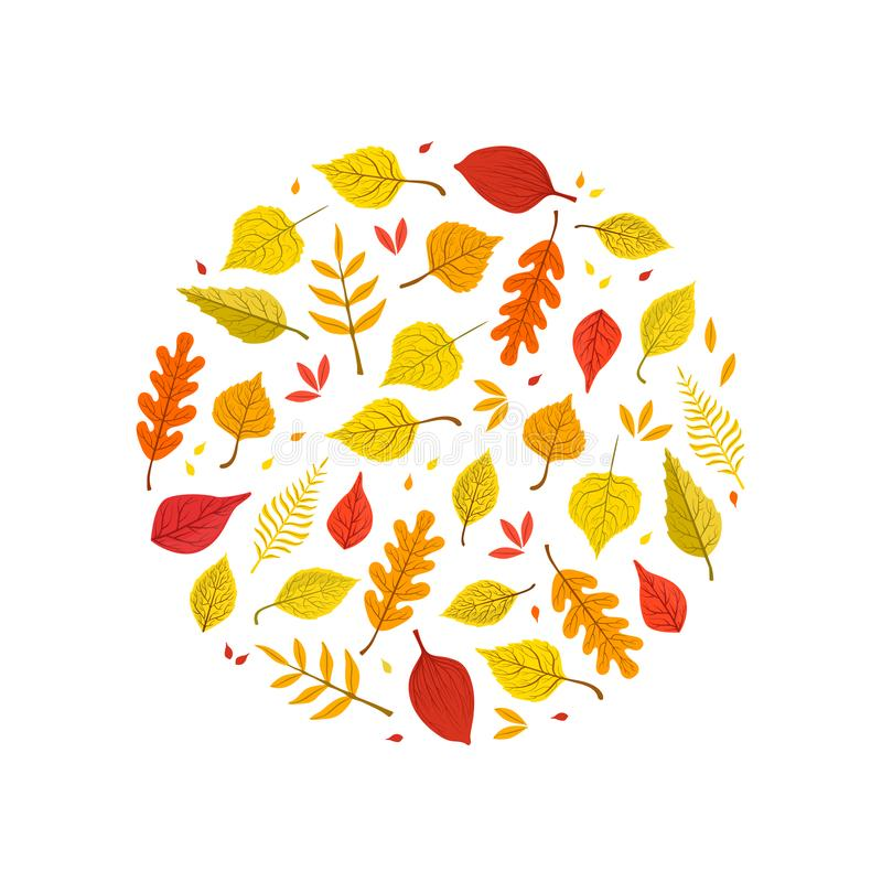 Bright Autumn Leaves of Various Forest Trees Seamless Pattern of Round Shape Vector Illustration stock photos