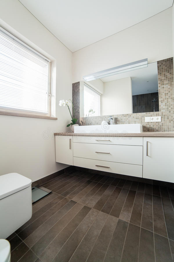 Download Bright Bathroom With Sink And Wc Stock Image - Image of modern, lifestyle: 32888301