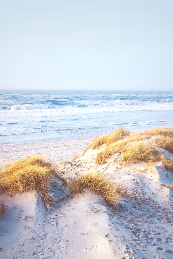 Bright beach at the danish coast royalty free stock image