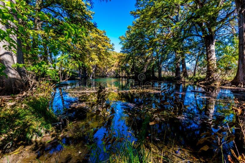 Bright Beautiful Fall Foliage on the Crystal Clear Frio River. Bright Beautiful Fall Foliage on the Crystal Clear Frio River with Blue Skies stock photo