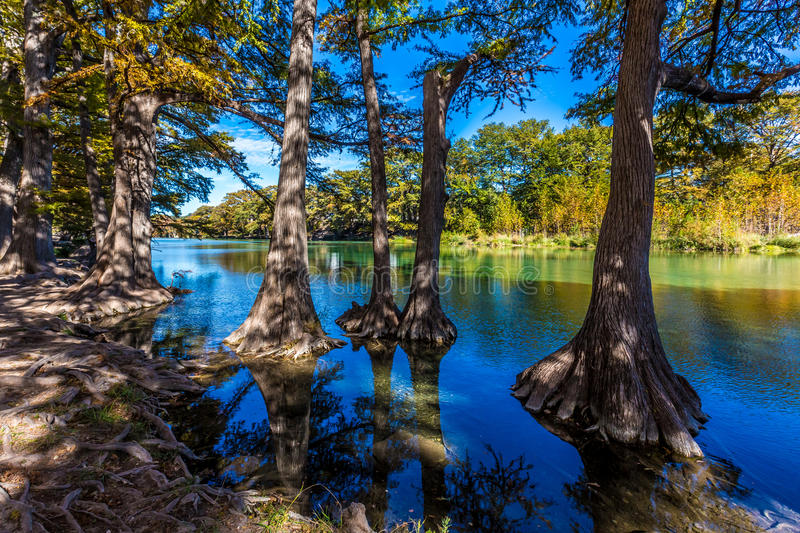 Bright Beautiful Fall Foliage on the Crystal Clear Frio River, Texas. Rocky River Bed of the Crystal Clear Frio River in Texas. Fall foliage at Garner State stock photo