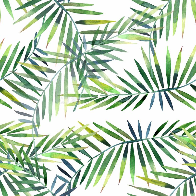Bright beautiful green herbal tropical wonderful hawaii floral summer pattern of a tropic palm and monstera leaves watercolor hand stock illustration