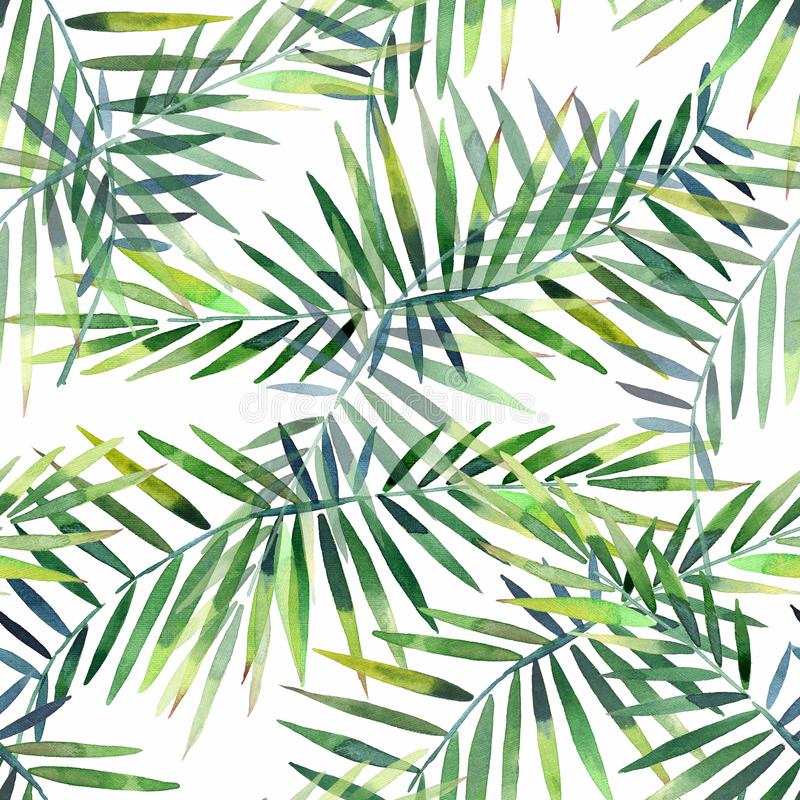 Bright beautiful green herbal tropical wonderful hawaii floral summer pattern of a tropic palm and monstera leaves watercolor vector illustration