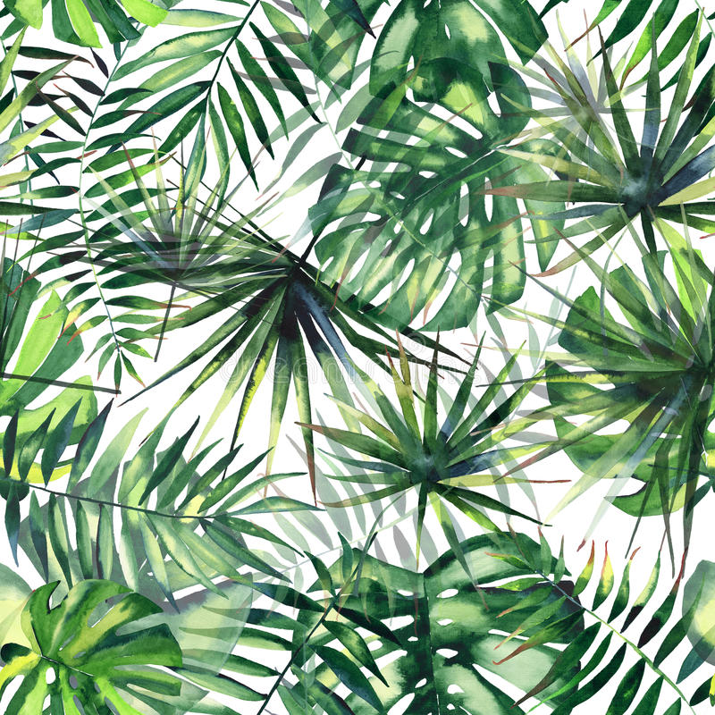 Bright beautiful green herbal tropical wonderful hawaii floral summer pattern of a tropic palms watercolor vector illustration