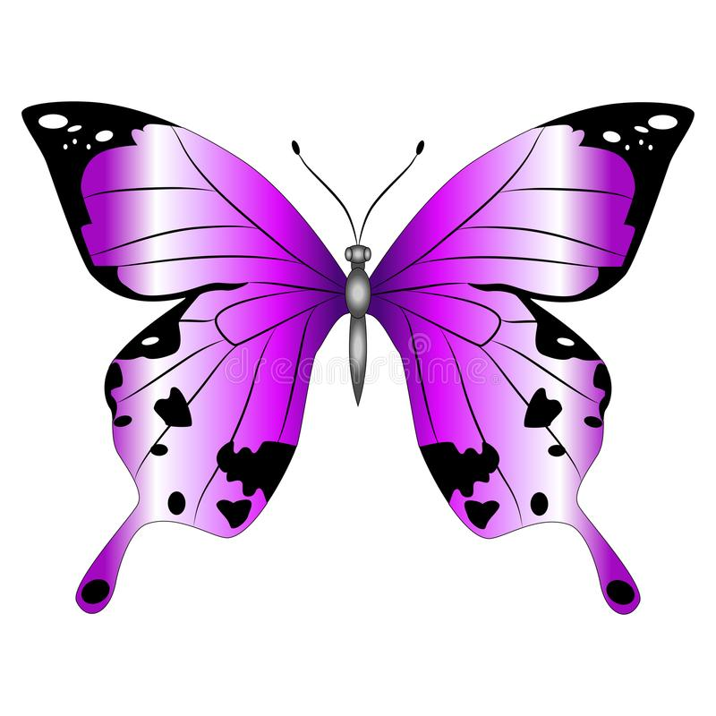 purple butterfly vector stock illustrations – 6,428 purple butterfly vector  stock illustrations, vectors & clipart - dreamstime  dreamstime.com