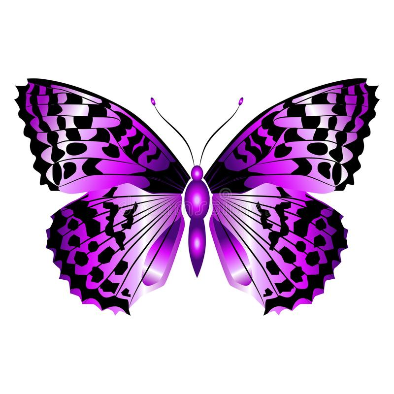 Bright beautiful purple butterfly. Vector illustration isolated. stock photography