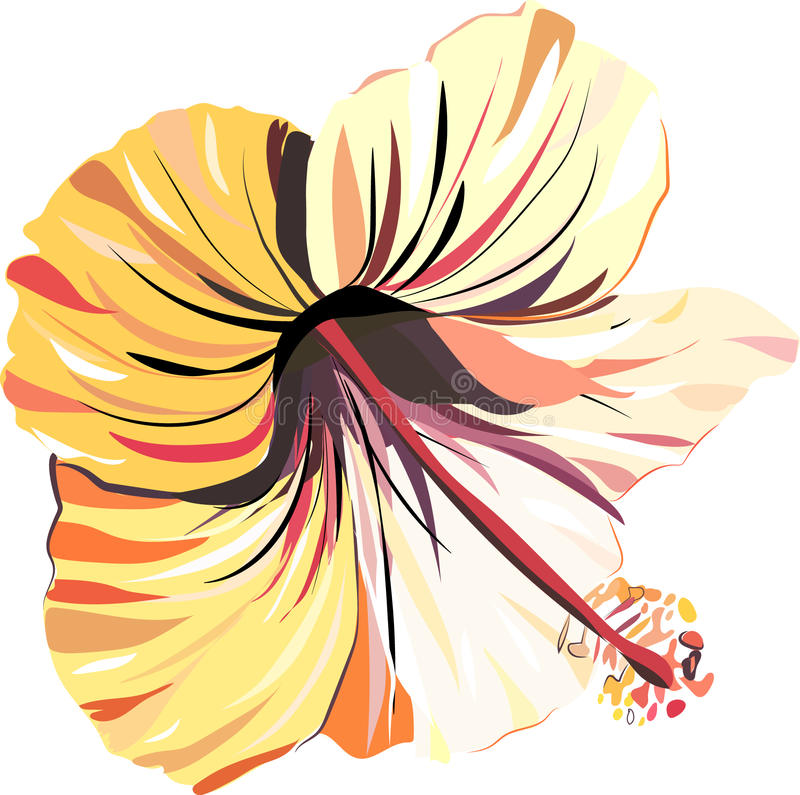 Bright beautiful tender sophisticated lovely tropical hawaii floral summer tropic light pink and yellow hibiscus seamless i vector illustration