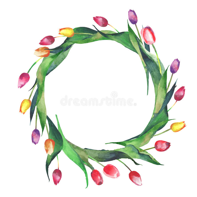 Bright beautiful wreath of red tulips yellow pink purple lavender flowers. Bright beautiful wreath of red tulips yellow pink purple lavender colors watercolor stock illustration