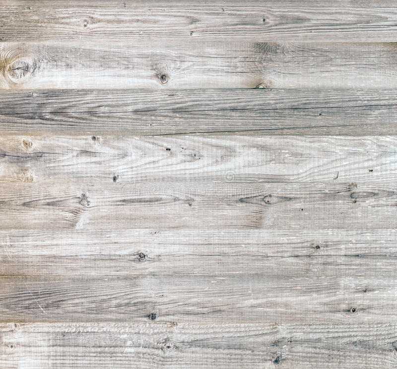 Bright beauty wood stock images
