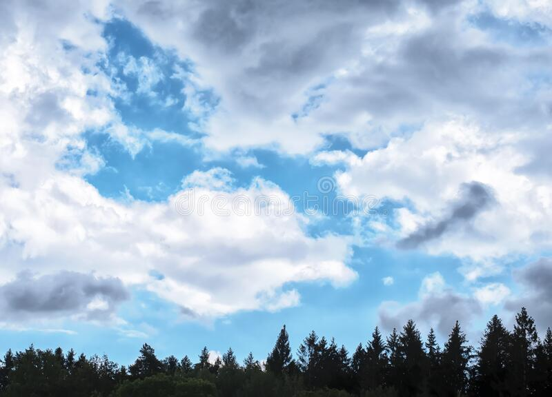 The bright blue sky in the summer midday with storm clouds. The bright blue cloudy sky in the summer midday with storm clouds and part of forest royalty free stock image