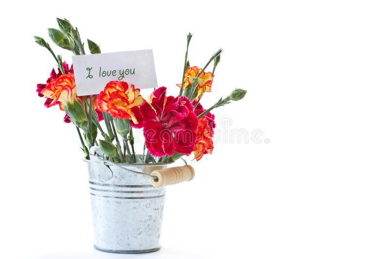 Bright bouquet of carnations in a bucket royalty free stock photography