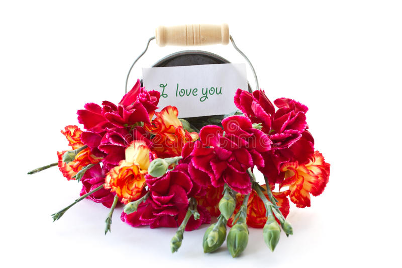 Bright bouquet of carnations in a bucket royalty free stock photos