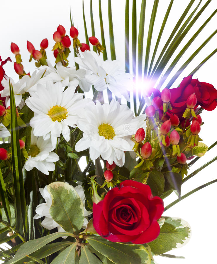 Bright bouquet with chamomiles and roses.  royalty free stock photos