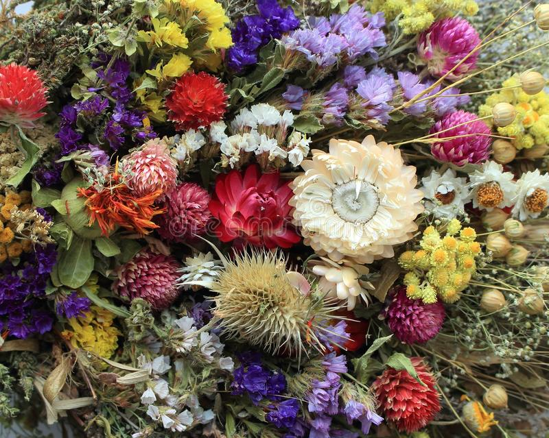 Bright bouquet of flowers. Floral gift. Flower decoration. Different flowers background. Colorful natural plants. stock photos