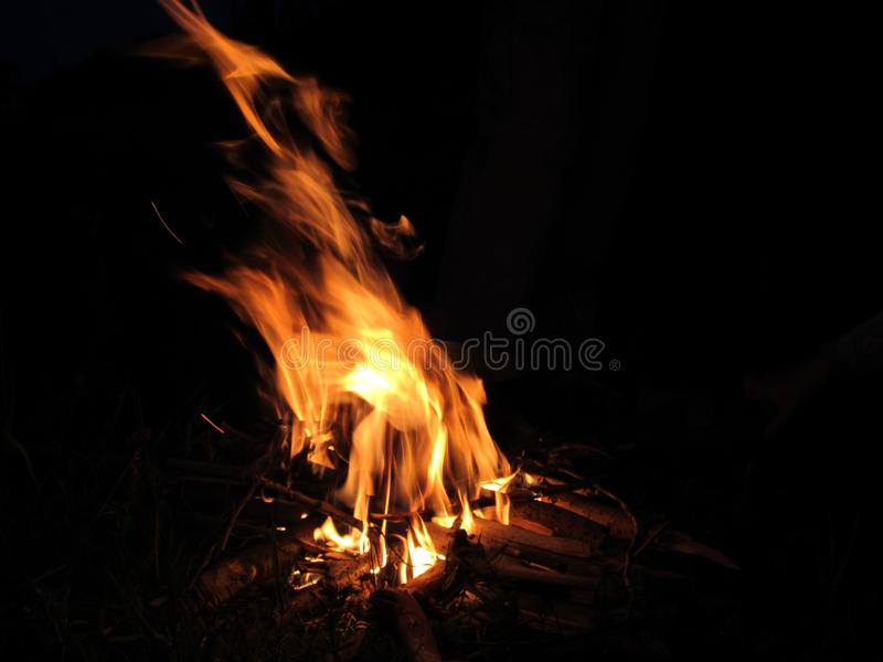 Bright Camp fire in a summer night stock photography