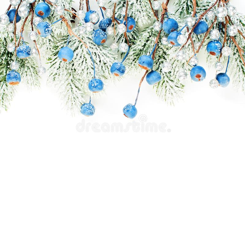 Bright Christmas card composition with blue berries and Xmas tree branch isolated on white background. Winter decorations border royalty free stock photography