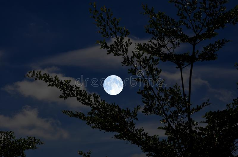 Bright and clear full moon in blue sky stock images