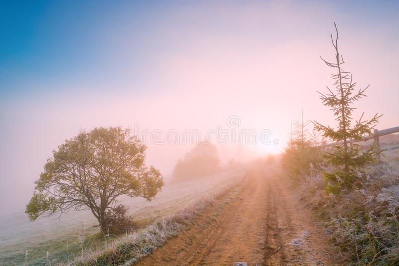 Bright cold misty morning royalty free stock photos