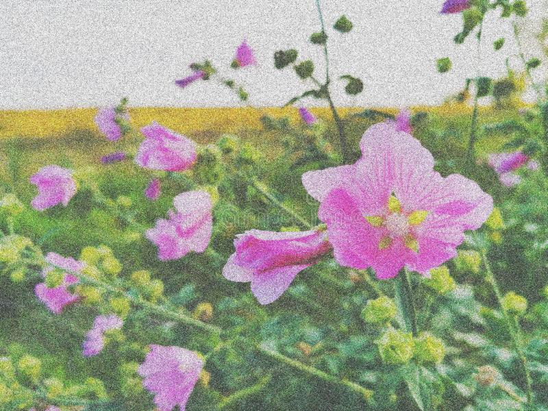 Bright colored illustration from foto of summer flowers.  stock photography