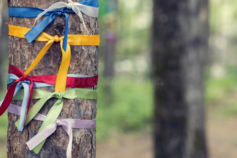 Bright colored ribbons tied around a tree. Religious Tradition of Buddhists stock photos