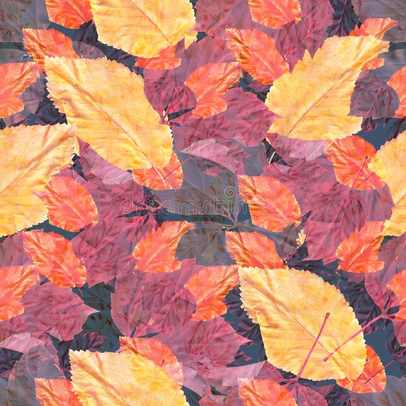 Bright colorful autumn leaves. Seamles pattern. a vintage artwork. Bright colorful autumn leaves. Seamles pattern. Natural background. Mixed media vintage vector illustration