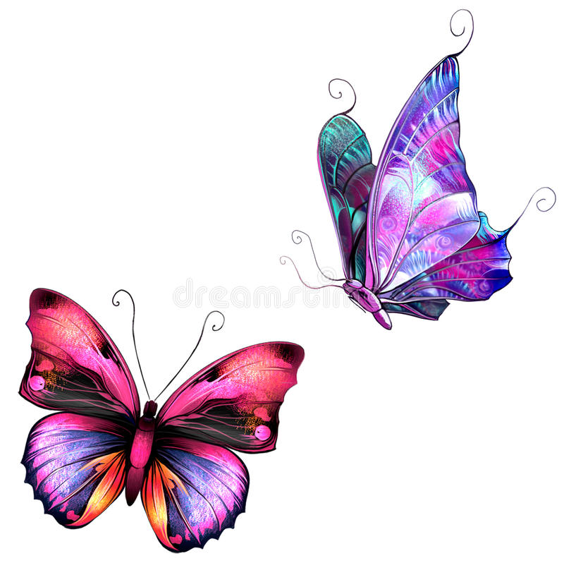 Butterflies. Bright colorful Butterflies. Isolated Illustration on white background