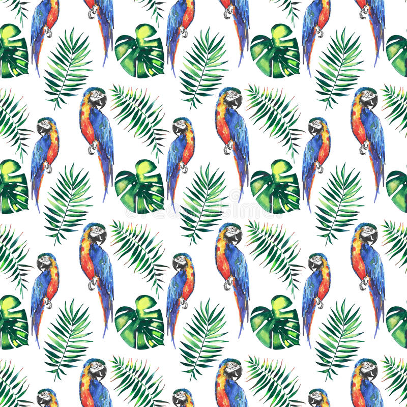 Bright colorful cute beautiful jungle tropical yellow and blue big parrots with green palm leaves pattern watercolor hand illustra royalty free illustration
