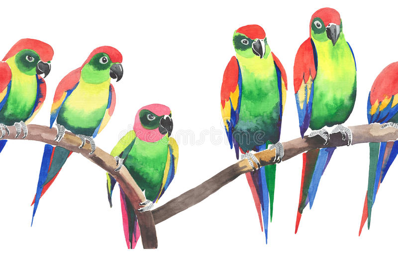 Bright colorful cute beautiful jungle tropical yellow and green parrots on a branch pattern royalty free illustration
