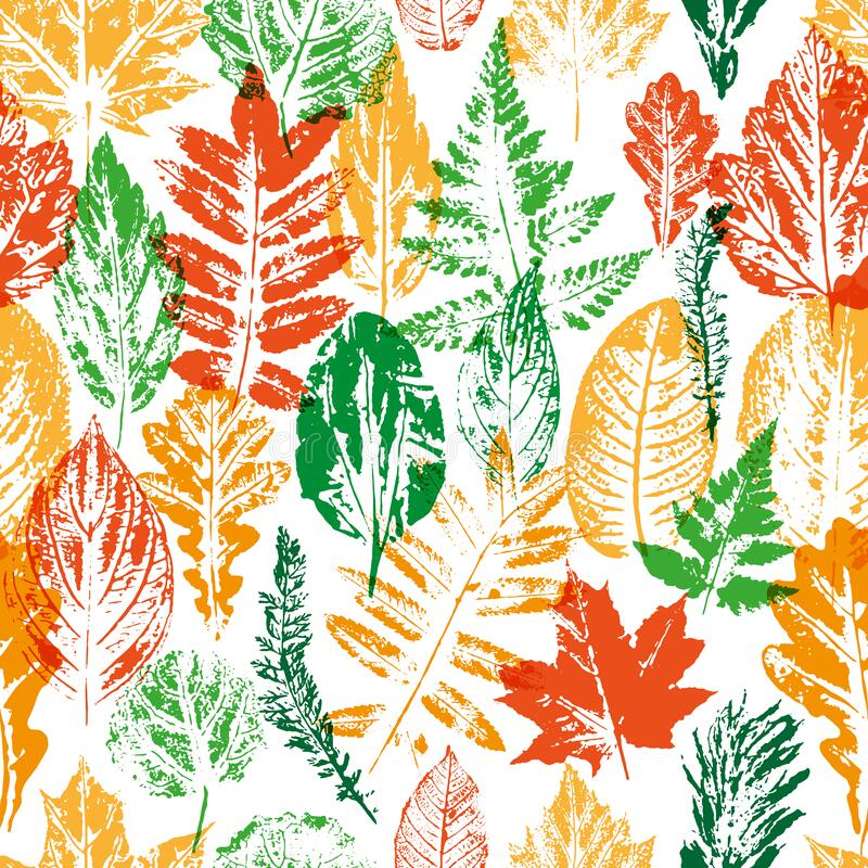 Free Bright Colorful Floral Pattern, Made Of Forest Leaves Stock Images - 192907854