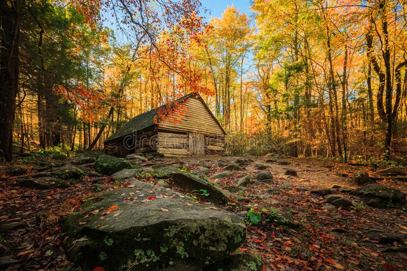 Bright Colorful Forest Abandoned Location Barn Wooden Rocky Path Nowhere Empty Nobody Fall Autumn Colors. Bright Colorful Forest Abandoned Location Barn Wooden royalty free stock image
