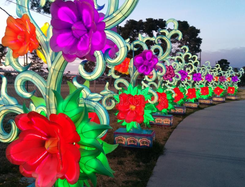 Row of flowers along a walkway at Chinese lantern festival royalty free stock image