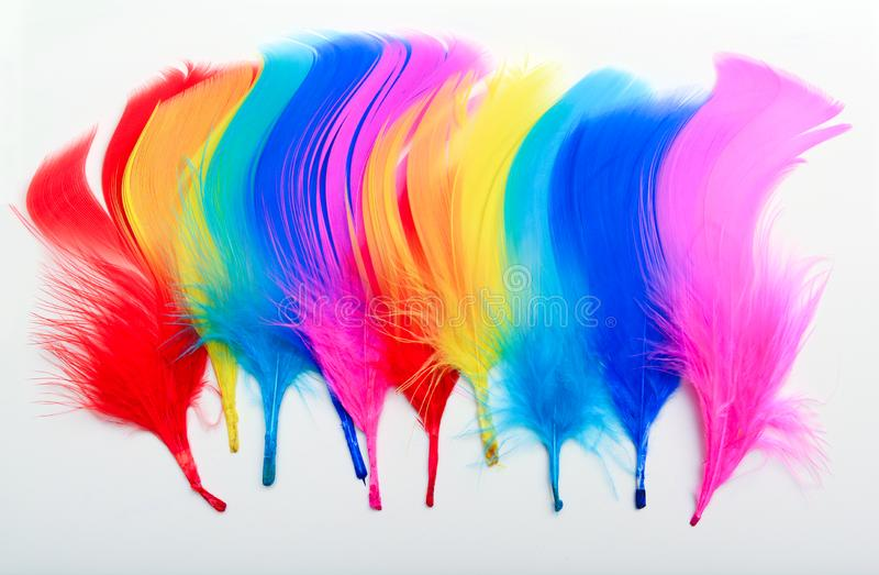 Bright coloured feathers paint brush strokes onto paper. Creative design idea. Concept stock photo