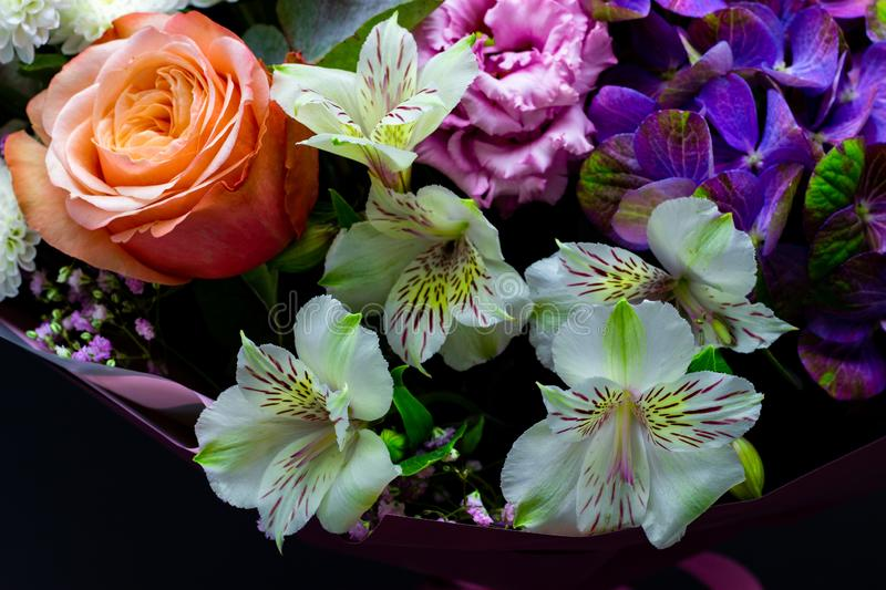 Bright contrasting bouquet assembled from hydrangea, peony rose, chrysanthemum, eustoma and alstroemeria close-up. Bright contrasting bouquet assembled from royalty free stock photography