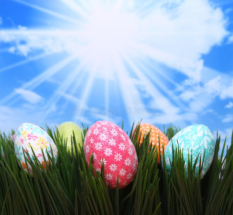 Bright Easter Spring Eggs in the Grass stock photos