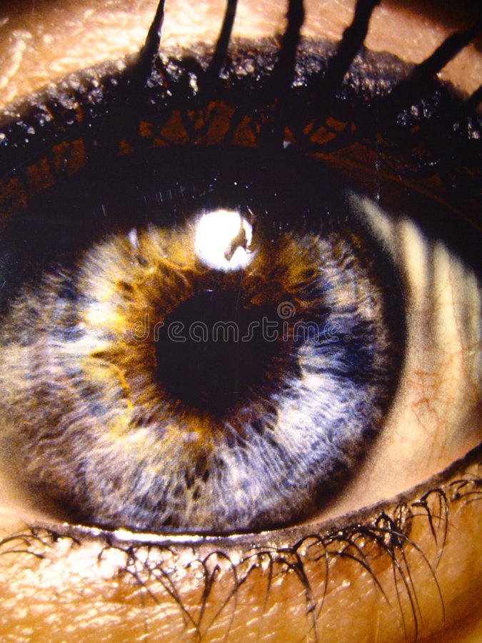 Bright eye royalty free stock photography