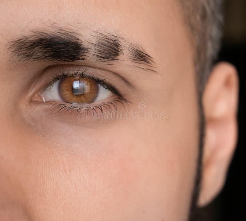 Double eyebrow slit