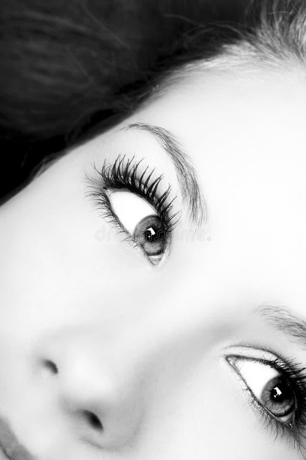 Bright eyes stock image
