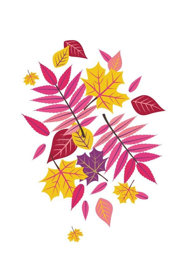 Free Bright Fall Autumn Sumac Leaves Vector Illustration 1 Stock Photography - 100808472