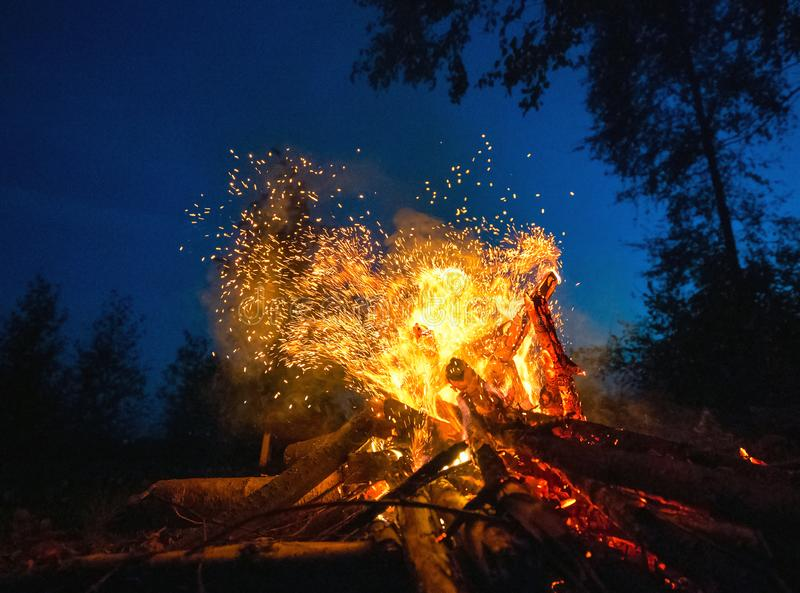 Bright fire on a dark night in a forest glade. stock photos