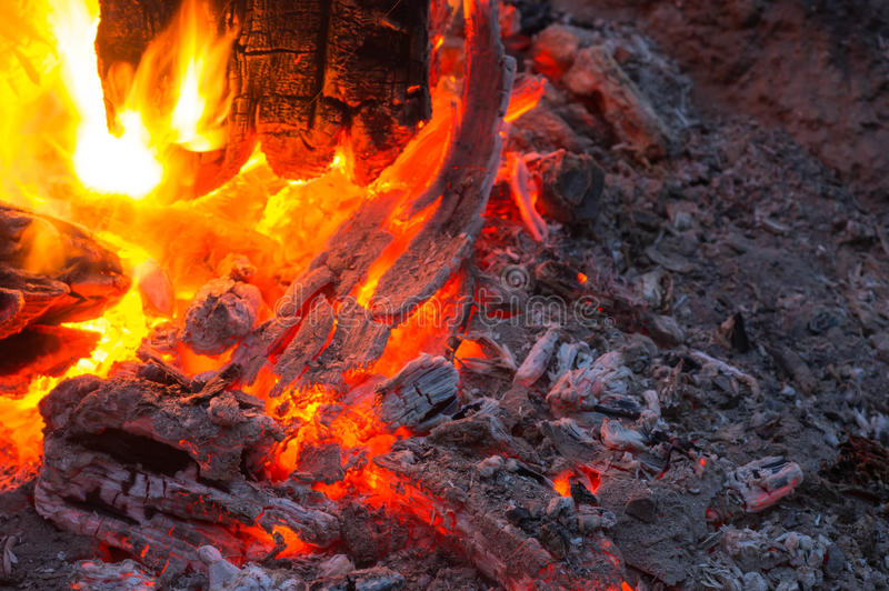 Bright flame of the burning bonfire royalty free stock image