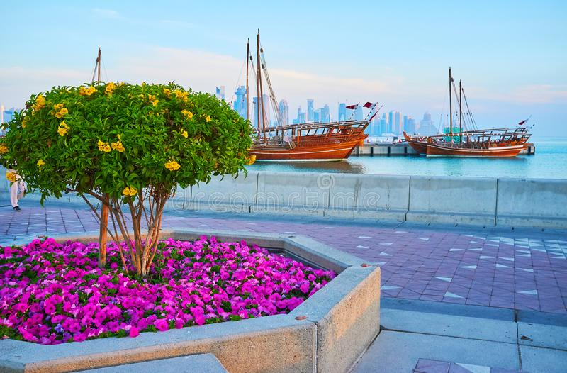 The flower beds in Doha, Qatar. The bright flower beds and blooming trees on Corniche promenade of Doha, the old dhow boats are seen on background, Qatar stock photos