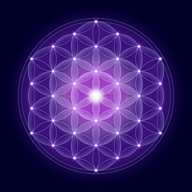 Bright Flower of Life With Stars royalty free illustration