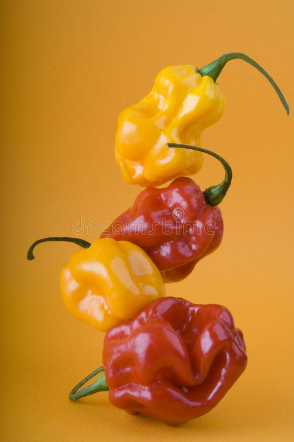 Bright and fresh hot peppers tower stock photo