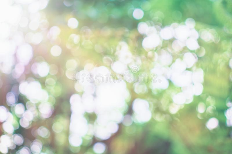 Bright glowing green nature bokeh background. Spring or summer abstract backdrop. Soft Light royalty free stock images