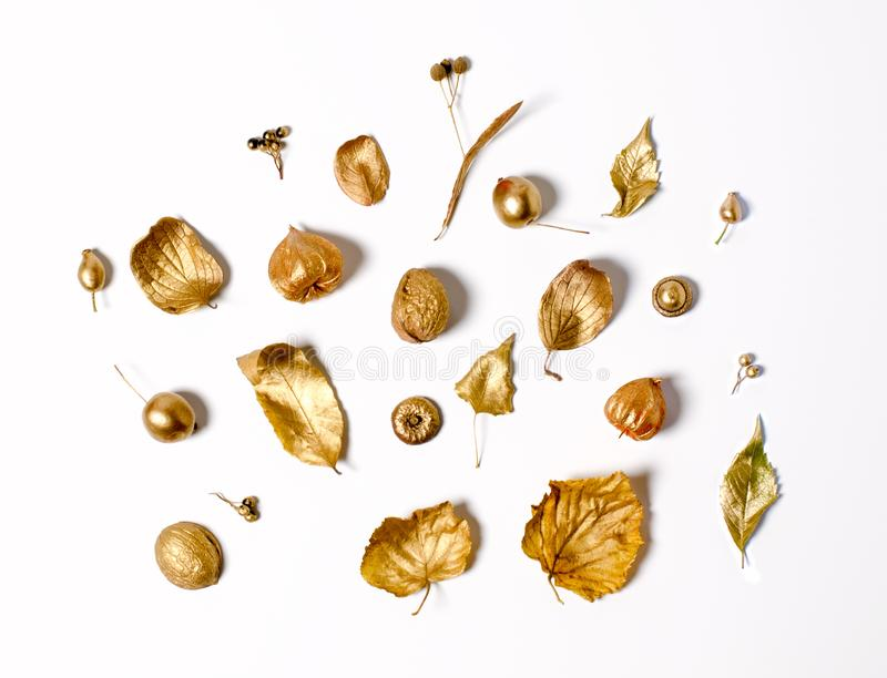Bright golden autumn leaves, wild apples, and physalis flowers on a white background. Beautiful autumn frame. Top view photo stock photography