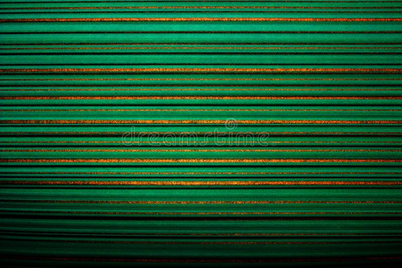 Wallpaper striped. Bright green background in a horizontal stripe of gold color, darkened, vignette. royalty free stock photography