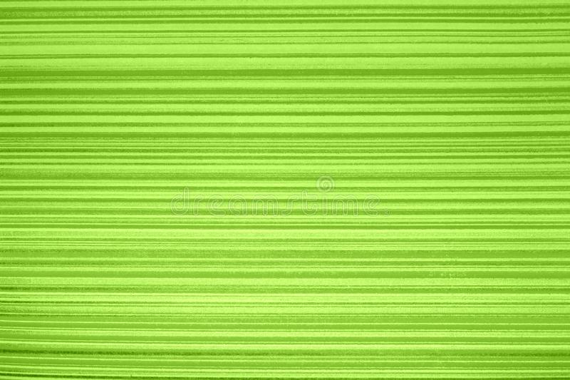 Wallpaper striped. Bright green background in a horizontal band of gold, darkened, vignette.Grunge light green banner texture. Blu. Bright green background in a stock image